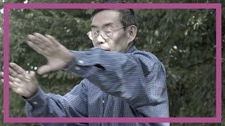 Yongxin Meng, Zhang Jungmai, die chinesische Verfassung und das Soja´s