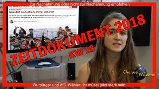 Wutbürger und AfD-Wähler: Ihr müsst jetzt stark sein!